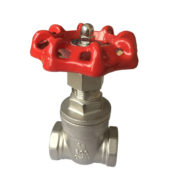 Chemical Resistant Industrial CF8M Gate Valve NPT Female Thread